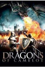 Dragonsof2014